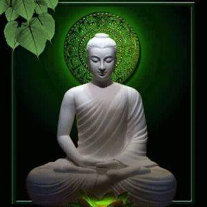 Buddhism / Eastern Religions
